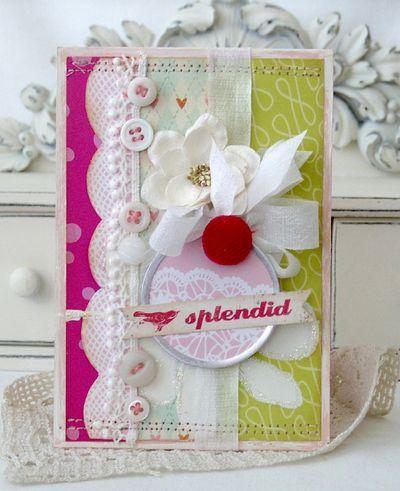 Splendid_meliphillips1