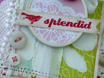 Splendid_meliphillips2