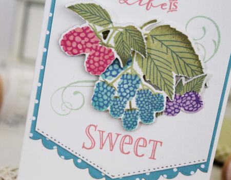 Ptisberries2